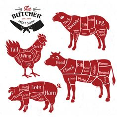 Find Meat Cuts Diagrams Butcher Shop Animal stock images in HD and millions of other royalty-free stock photos, illustrations and vectors in the Shutterstock collection. Thousands of new, high-quality pictures added every day. Beef Cuts Chart, Carnicerias Ideas, Adobe Illustrator, Meat Restaurant, Restaurant Identity, Animal Silhouette, Silhouette Vector, Butcher Shop, Meat Butcher