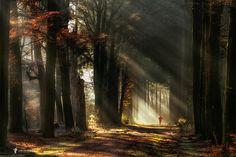Early Morning Magic by larsvandegoor.com