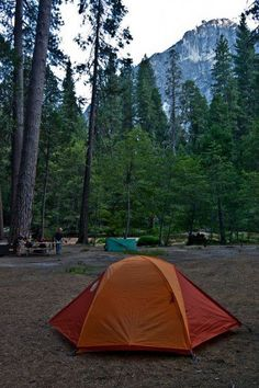 About 10 years ago, I spent almost two hours on the phone on a Sunday morning calling the reservations hotline for Yosemite National Park, trying to score two campsites for our summer vacation.  Afte