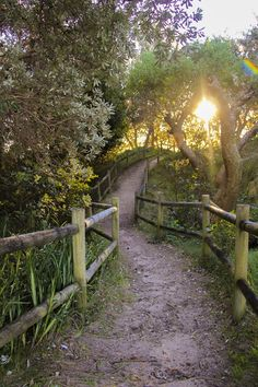 Id love this as a trail around the property...or between Feilds..