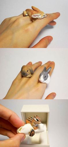 Animal Cling Rings By Jiro Miura: Mr. Miura sells his works under the brand name 'Count Blue'. The cost of one ring ranges from $15 to $200.