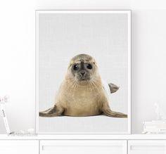 Seal Print, Animal Wall Art, Animal Art, Nursery Animal Print, Nursery Baby Animal, Kids Room Decor, Baby Room Decor, Playroom Art, Wall Art by TheModernTrend on Etsy https://www.etsy.com/listing/462096431/seal-print-animal-wall-art-animal-art