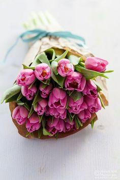 .spring bouquet of flowers, tulips - ramo de tulipanes, primavera