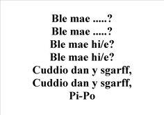 Ble mae...?