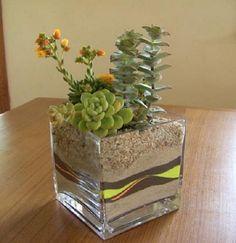 39 DIY Sand Art Terrarium Ideas & Projects Everyone Will Love Succulents In Containers, Cacti And Succulents, Planting Succulents, Planting Flowers, Terrarium Containers, Succulent Display, Succulent Centerpieces, Succulent Arrangements, Mini Terrarium
