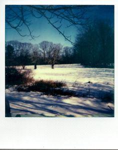 christmas day polaroid