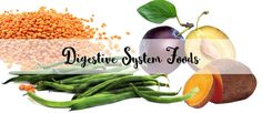 Foods that support healthy digestive function | Don Tolman International