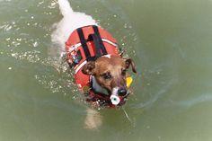 Always wear your lifejacket! #BoatUS