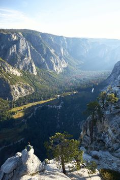 Man Enjoying The View into The Yosemite Valley Vertical Free Stock Photo Amazing Nature Photos, Nature Images, Us Images, Beautiful Pictures, Stock Photo Sites, Free Stock Photos, Free Photos, Cool Photos, Forest Girl