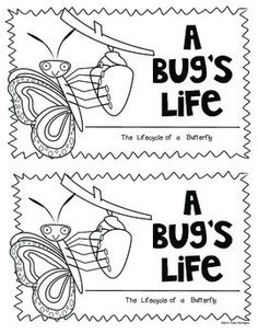 A Bug's Life (Butterfly) Science for Kindergarten and First Grade. Includes 21 pages of resources for teaching the lifecycle: anchor chart, emergent reader, lifecycle cards, let's label it cut/glue, graphic organizer, all about butterfly book template. $