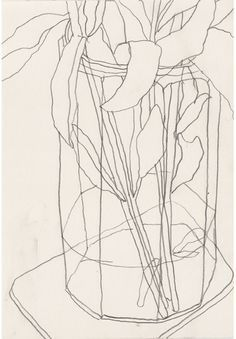 ellsworth kelly drawings - Google Search Illustration Inspiration, Illustration Art, Plant Drawing, Painting & Drawing, Drawing Flowers, Contour Line Drawing, Contour Drawings, Gesture Drawing, Contour 2