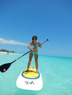 Siesta Key Paddleboard excursions and lessons!
