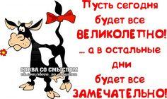 Позитивные фразочки в картинках #28114 » RadioNetPlus.ru развлекательный портал