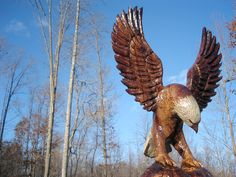 Bald Eagle carved out of reclaimed Walnut
