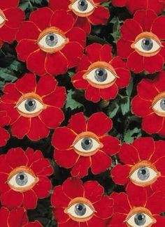 Eyeball flowers More painting trippy easy Grow the Classic Marigold Plant Psychedelic Art, Illustration Art, Illustrations, Wall Collage, Textures Patterns, Print Patterns, Art Inspo, Cool Art, Art Photography