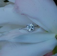 Trendy Diamond Rings :    Gorgeous.  - #Rings https://youfashion.net/wedding/rings/diamond-rings-gorgeous-13/