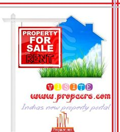 property search engine