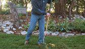How to Make Leaf Mold.  Fall leaves make an organic soil amendment and mulch