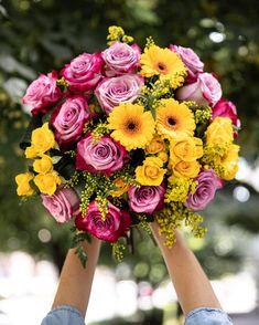 Eleganții trandafiri mov alături de trandafirii galbeni ramificați și de germini alcătuiesc un buchet vesel, potrivit pentru a-i însenina cuiva drag ziua. Contrastul cromatic scoate în evidență frumusețea fiecărei flori. Comandă un buchet plin de viață și adu un zâmbet! #buchete #livrareflori #florionline #deeppurple #roses #flowers Deep Purple, Floral Wreath, Joy, Flower Bouquets, Wreaths, Floral Crown, Floral Bouquets, Door Wreaths, Glee