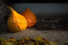 Pumpkins... painterly photography Photography For Sale, Fine Art Photography, Pumpkins, Colours, Autumn, Prints, Fall Season, Fall, Pumpkin