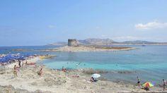 Alghero  #sardinia #sea #paradise #alghero #travel #holidays  http://luxuryholidaysinsardinia.com/case-vacanza-in-sardegna/migliori-case-vacanze.html
