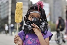 NeoMexicanismos - cazadordementes: Without corn there is no country: A girl holds an ear of GM maize at the end of a march against food multinational Monsanto.