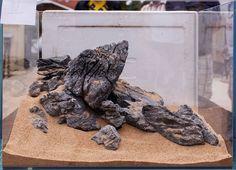Aquascaping ADA Seiryu Stone Rock Aquarium Tropical Fish Plant Shrimp Driftwood   eBay
