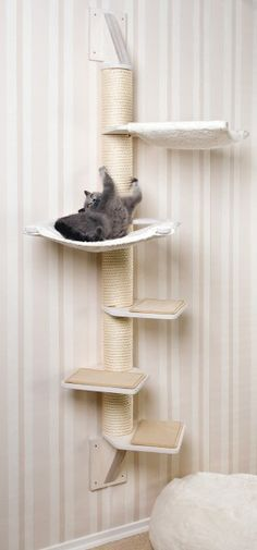 Solid wall cat tree for small spaces or corners. Stabiler Wandkratzbaum für kleine Räume oder Ecken.