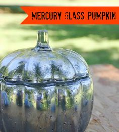 mercury_glass_pumpkin_project_how_to_directions[1]
