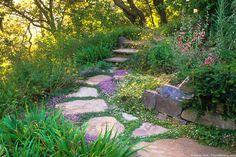 Giardino con vialetto con pietre irregolari, fiori e piante perenni da roccia - bello e colorato
