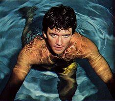 The Man from Atlantis 1977