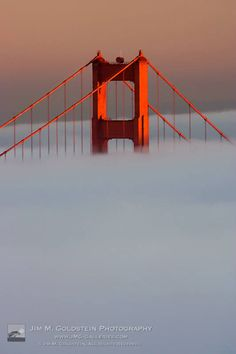 the golden gate bridge shrouded in fog, San Francisco