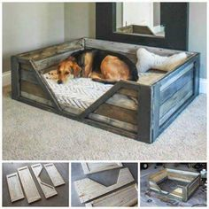 Here we have this simple yet purposeful pallet wood dog bed. This crate style pallet wood dog bed is rustic and spacious. You just have to add a comfy mattress for your doggy to have a sound sleep. Pallet Crafts, Diy Pallet Projects, Home Projects, Wood Crafts, Woodworking Projects, Pallet Ideas, Woodworking Plans, Woodworking Furniture, Diy Projects With Wood