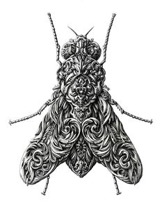 Illustration - illustration - Little Wings by Alex Konahin, via Behance. illustration : – Picture : – Description Little Wings by Alex Konahin, via Behance -Read More – Creative Illustration, Ink Illustrations, Illustration Art, Colossal Art, Insect Art, Motif Floral, Floral Patterns, Organic Patterns, Floral Designs