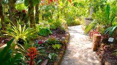 jardines botánicos en méxico - Buscar con Google