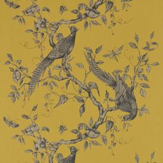 Browse our selection of Bird Wallpapers available in a combination of popular designs, colours and patterns including hummingbird wallpaper, parrot wallpaper and vintage bird wallpaper. Vintage Bird Wallpaper, Parrot Wallpaper, Paradise Wallpaper, Duck Wallpaper, Eyes Wallpaper, Feature Wallpaper, Botanical Wallpaper, Home Wallpaper, Vintage Birds