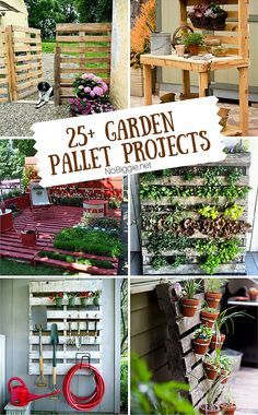 25+ garden pallet projects - NoBiggie.net