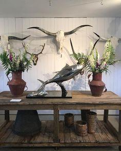 Tuna being exhibited at @originalhouseinteriors #tonight #exhibition #opening #party #vintage #reclaimed #furniture #lighting #sculpture #art #statue #sourced #industrial #antique #interior #interiordesign #garden #fishing #tuna