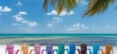 aruba by divi resorts Divi Resorts, Aruba All Inclusive, Aruba Resorts, Vacation Places, Vacation Spots, Costa, The Beach, Beach Chairs, Caribbean