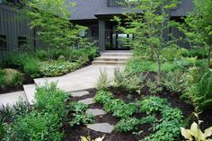 Xeriscape Gardens: How to Get a Beautiful Landscape With Less Water - Conserve water and make gardening much easier with the xeriscape approach's 7 principles  contemporary landscape by Samuel H. Williamson Associates