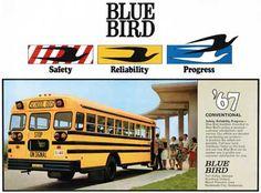 Blue Bird, School Bus, History, Blue Bird Body Co., Blue Bird Corp., Wanderlodge, Buddy Luce, Albert L. Luce, Cardinal Mfg., Fort Valley, Georgia - CoachBuilt.com Old School Bus, School Buses, Fort Valley, Busses, Big Trucks, Archer, Hunters, Motorhome, Blue Bird