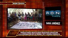 PRODUCTORES DE MEZCAL SE OPONEN A LA NORMA 199