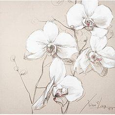 Canvas White Poppy 80x80
