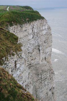 Bempton Cliffs, Yorkshire, England East Yorkshire, Yorkshire Dales, Yorkshire England, England Ireland, England And Scotland, England Uk, Holiday Places, Fantasy Places, English Countryside