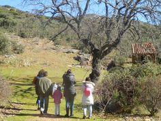 Senderismo Parque Nacional de Cabañeros, distintos niveles de rutas para todos los públicos Wonderful Places, Couple Photos, National Parks, Trekking, Paths, Horses, Adventure, Activities, Couple Shots