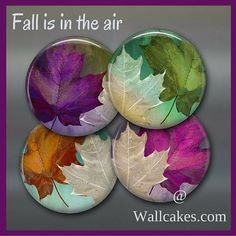 Colourful fall leaves kitchen magnets.