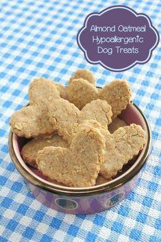 Almond Oatmeal Dog Treat Easy Dog Treat Recipes, Healthy Dog Treats, Simple Recipes, Organic Dog Treats, Homemade Dog Cookies, Homemade Dog Food, Dog Biscuit Recipes, Dog Food Recipes, Dog Biscuits