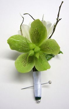 Hellebores...just beautful! they come in shades of green, ivories and dusty pinks.