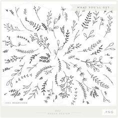 grapevine wreath watercolor - Google Search