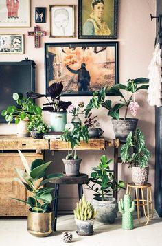 cozy modern. / sfgirlbybay gallery wall & plants - LOVE!